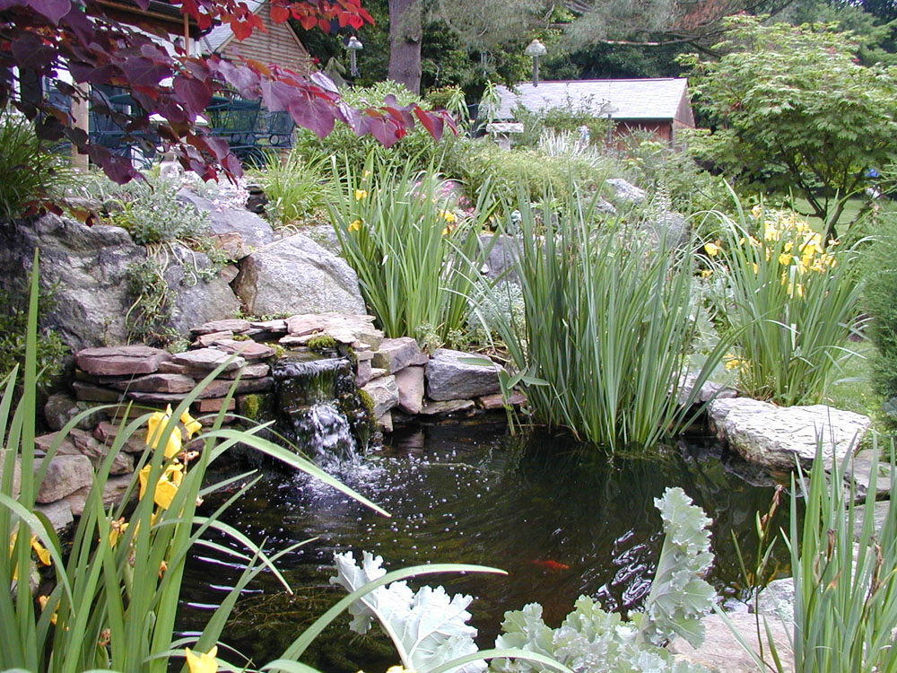 Water Gardens, Ponds & Waterfalls | Naturescapes Landscape ... on Backyard Pond Landscaping Ideas  id=60405