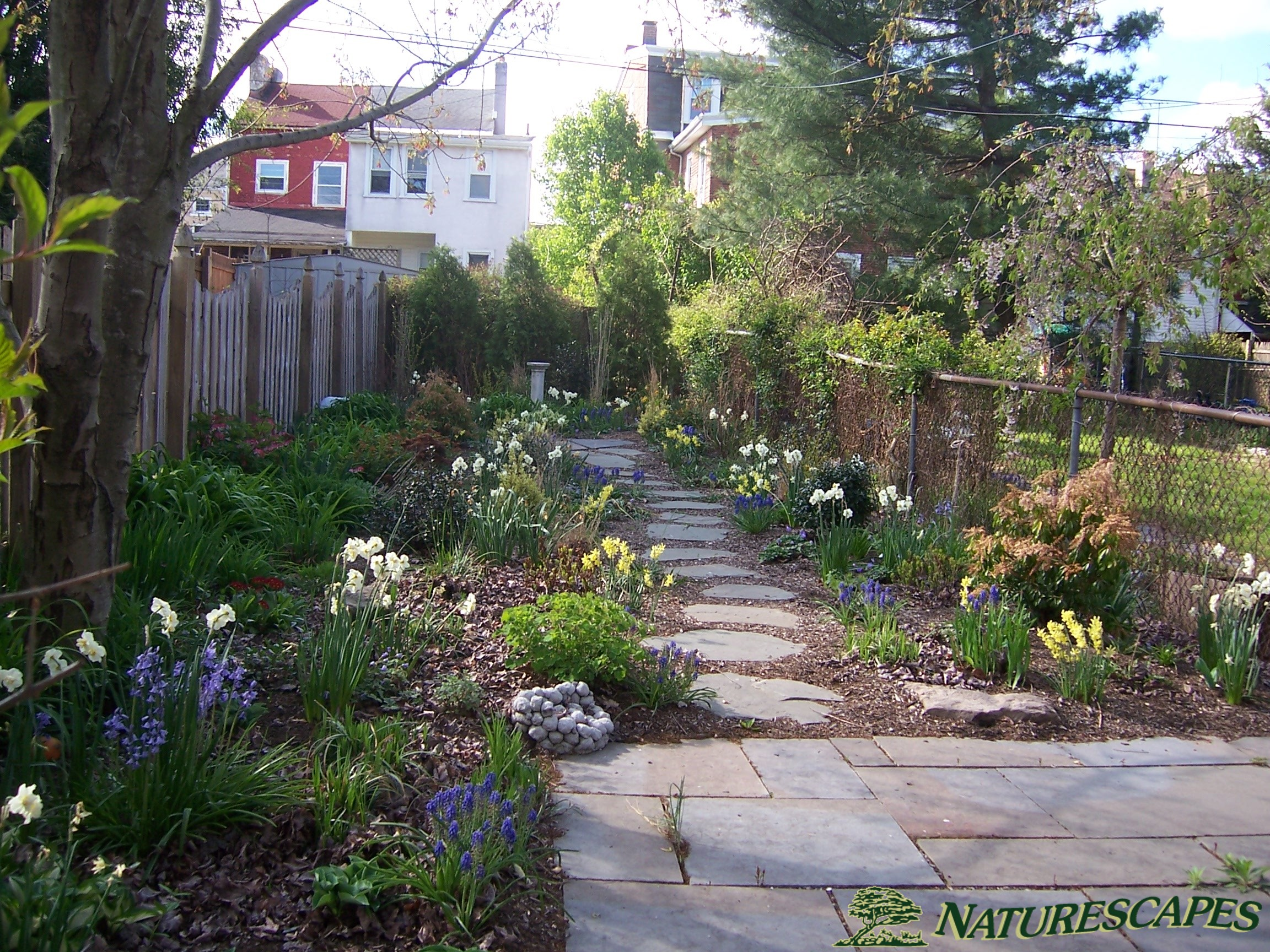 Landscape Design in Phoenixville, PA | Naturescapes ... on No Grass Garden Ideas  id=72961