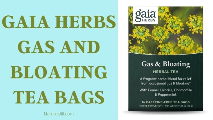 Gaia Herbs Gas And Bloating Tea Bags
