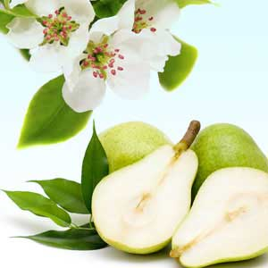 good pear scent