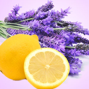 Popular Lemon Fragrance Oils Lemon Lavender Type Fragrance Oil