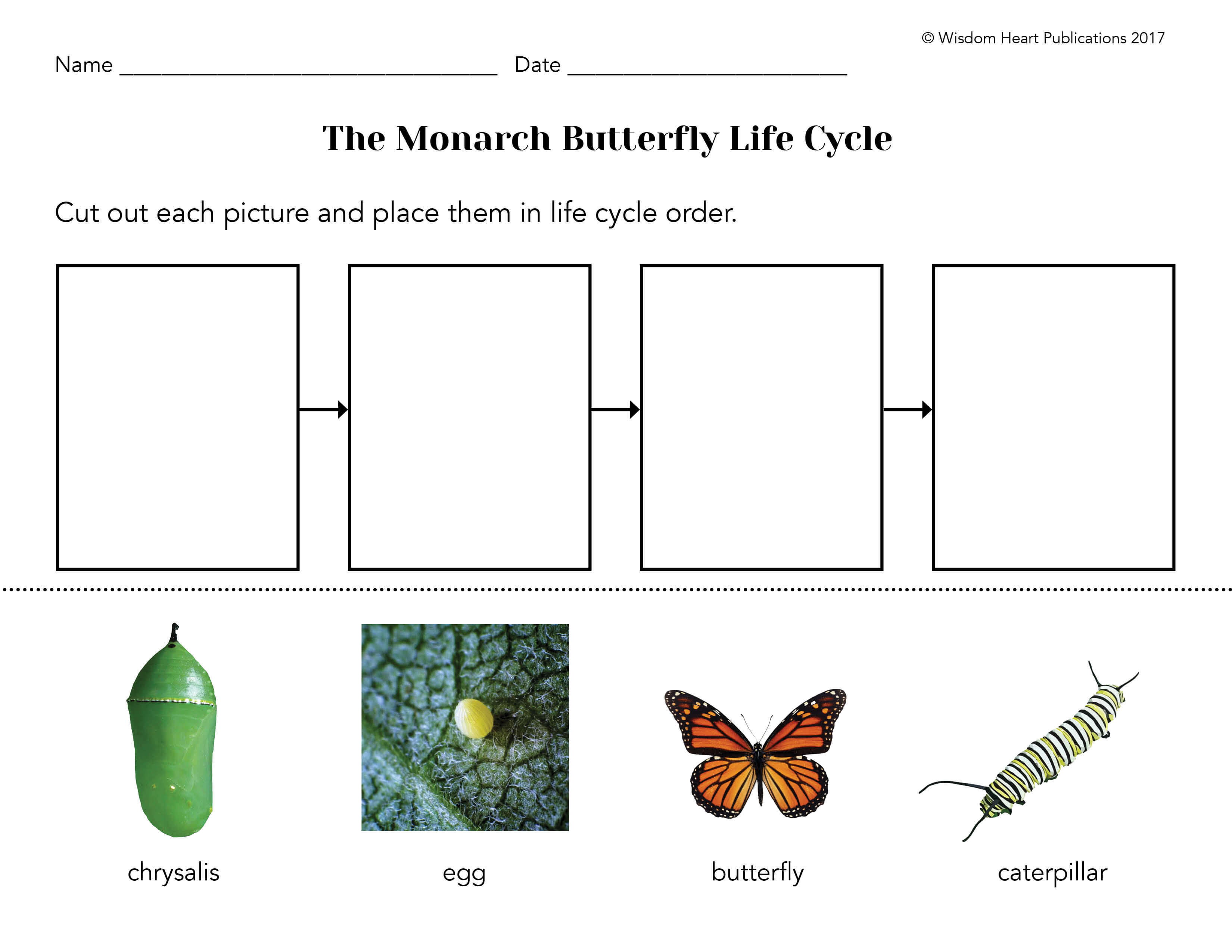 I Am A Butterfly Award Winning Picture Book About Monarch