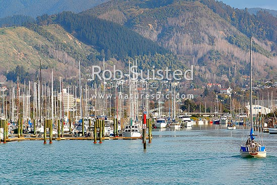 Port Nelson Boat Marina With Yacht Entering Harbour Nelson Nelson City District Nelson