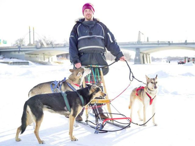 Man stands on a frozen river in front of a bridge with a kick sled and 3 sled dogs.