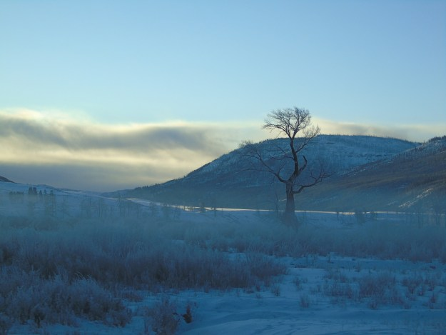 Frosty morning in Lamar Valley