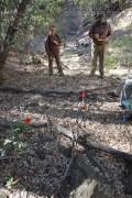 Bear Ritual Trail