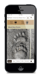 iTrack Wildlife App Screenshot Black Bear Track