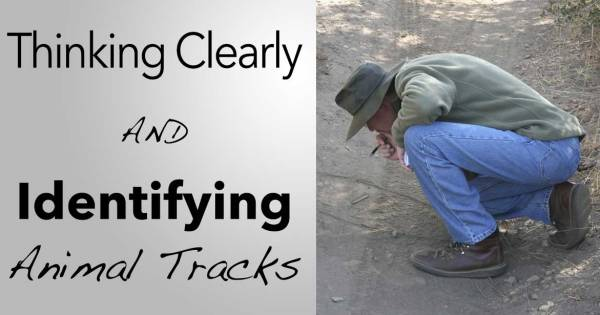 Thinking-Clearly-&-Track-ID
