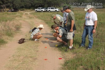 Central Texas Certification 06/10/2012
