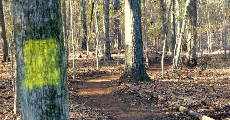 SIM USA 'Back 40' Trail Master Plan
