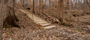 Nature Trail Steps Designer Builder