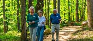 Nature Preserve Trail Design Build