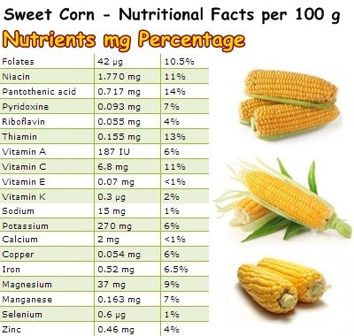 Sweet Corn – NatureWord