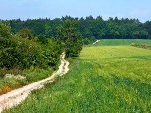 landscape-1419713_640