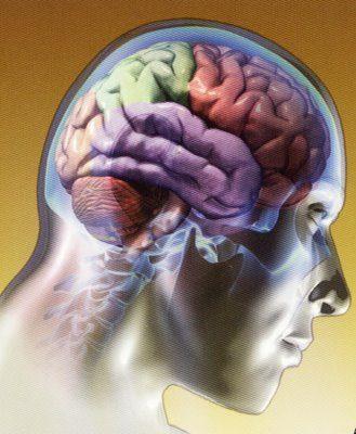 Remedios naturales para Alzheimer