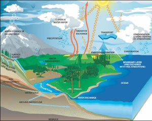 A diagram illustrating the hydrologic cycle of Earth.