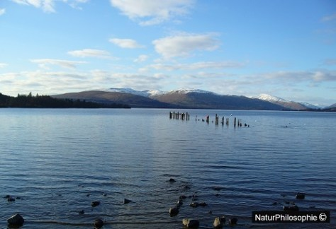 A photograph taken at Loch Lomond. Image: NaturPhilosophie