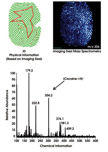 Two Imaging Desi Mass Spectrometry data pictures and a graph showing the chemical relative abundance in fingerprinting - a peak at 300 betrays the presence of cocaine.