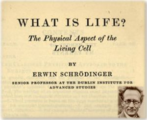 "A reproduction of the front page of Erwin Schrödinger's book ""What is Life? - The Physical Aspect of the Living Cell""."