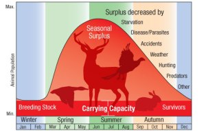 An illustrated diagram and chart showing the carrying capacity of land throughout the year for different species, including the seasonal surplus and causes for surplus decrease, i.e. starvation, disease/parasites, accidents, weather, hunting, predators...