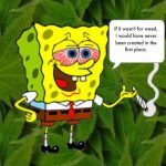 "A cartoon showing a red-eyed Spongebob Squarepants holding a joint and commenting: ""If it wasn't for weed, I would have never been created in the first place."""