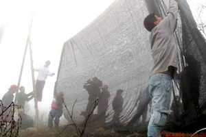 A photograph showing a team of fog harvesters building a fog catcher. Source: Youthinkgreen