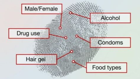 A drawing showing a fingerprint, and all that it can reveal: Male or Female, Drug Use, Alcohol, Food Types, Hair Gel, Condoms...
