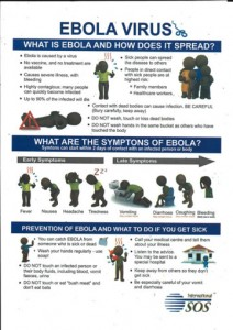 An infographic about the Ebola virus spread prevention measures and symptoms diagnosis.