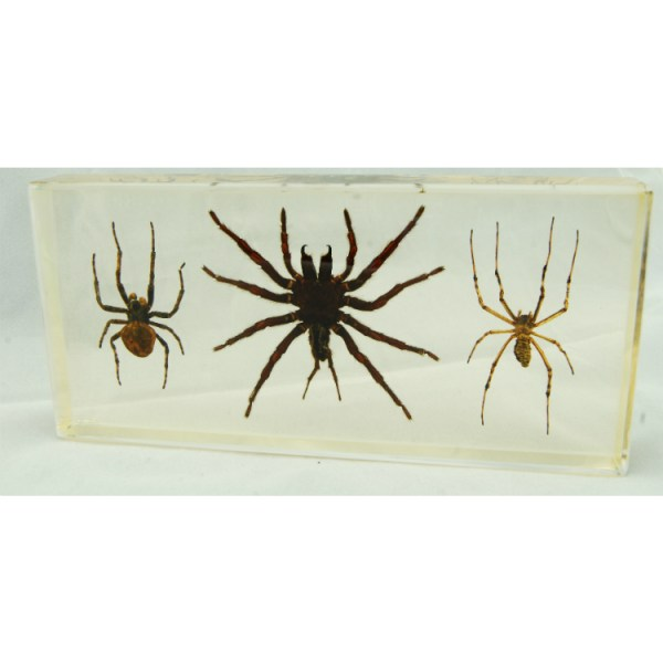 set of 3 spiders
