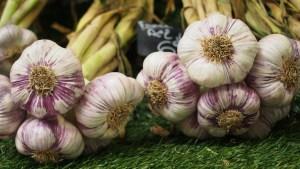 Heilpflanze Knoblauch gegen Bluthochdruck, Virusinfektionen und Krebs