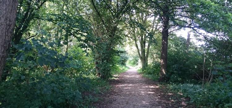 waterweg bos Natuurlijk Linda