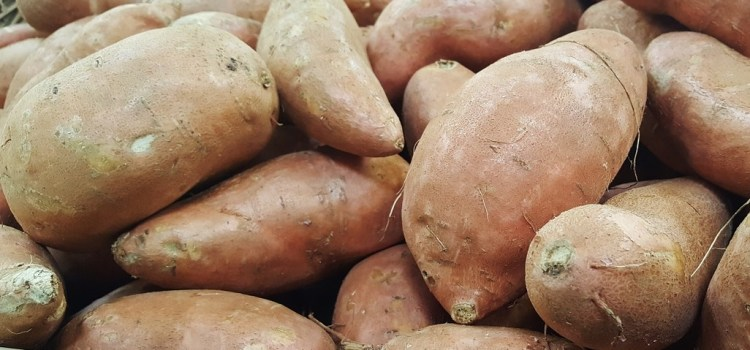 Natuurlijk Linda zoete aardappel