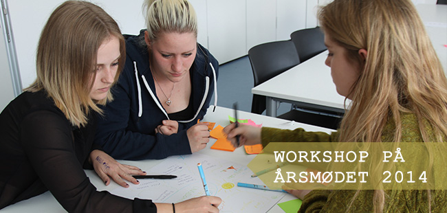 Workshop på Årsmødet 2014