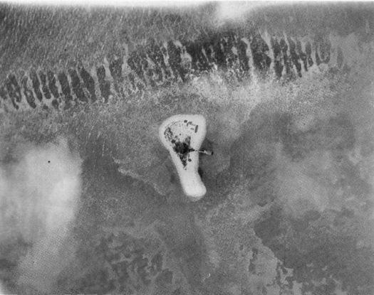 Aerial Photograph