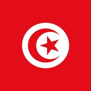 Bandiera Tunisia 20 X 30 Cm 35 438 01 Osculati