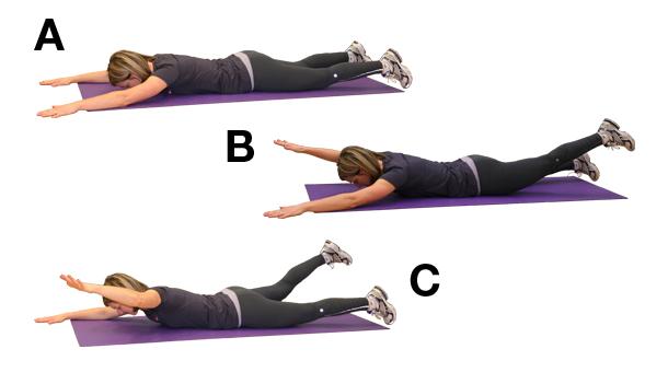 Perfect Posture Program Nautilus Plus Nautilus Plus
