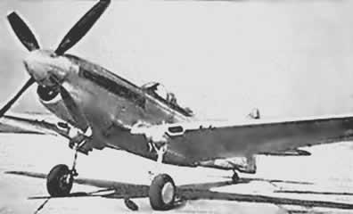 p-40q