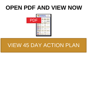view action plan now