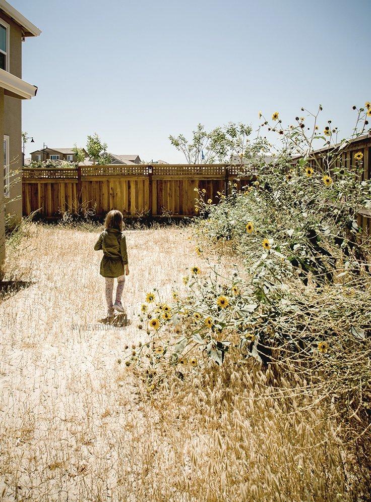 S walking through overgrown yard