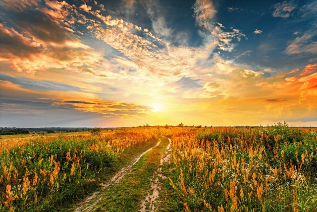 Unshakeable Joy | Doug Nuenke | Summer sunset landscape with a dirt road through a field.