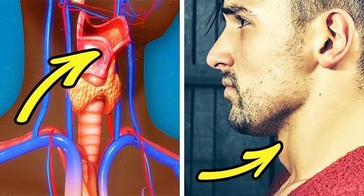19 фактов о мужском теле, которые удивят вас, встревожат и даже напугают Не только женщины полны загадок!