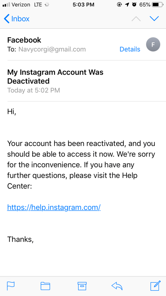 Instagram Deactivated our Account … For No Reason – Navy Corgi