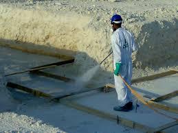 ارخص شركة لابادة النمل الابيض بالضمان,التخلص من النمل الابيض,مكافحة النمل الابيض
