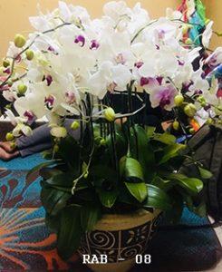 Beli Bunga di Menteng Jakarta Pusat