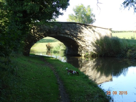 This bridge extends to the left as it also goes over the River Cherwell. Note Izzy off the lead.