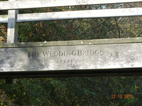 we passed under this bridge, and now I will have to try and find why it was put there.