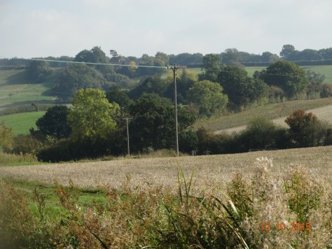 Rolling hills of the Warwickshire countryside