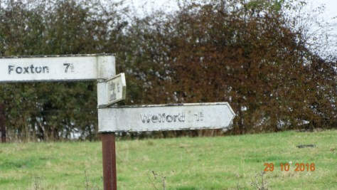 signpost showing the way