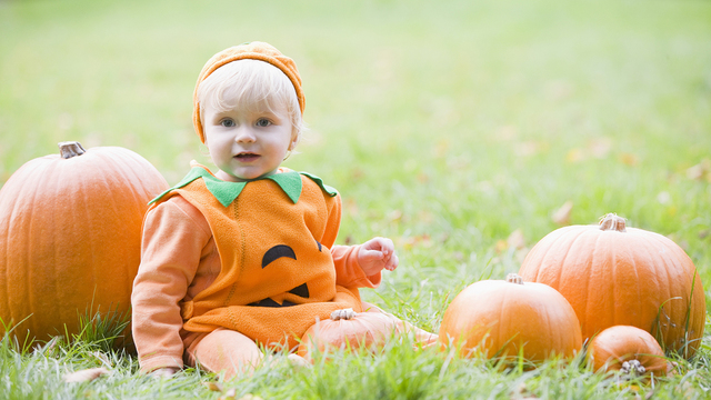 Baby Boy Outdoors In Pumpkin Costume With Real Pumpkins_358711
