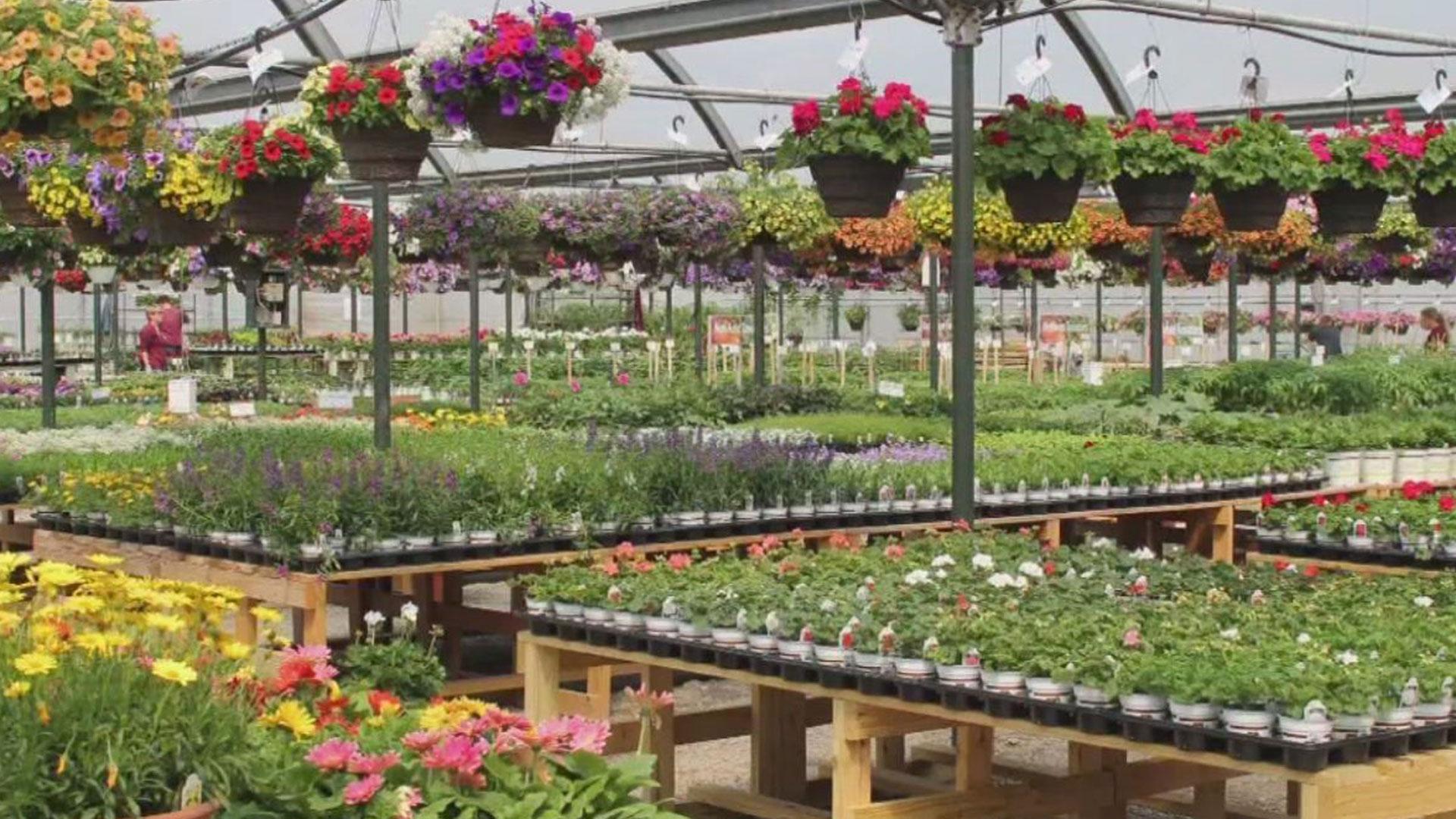 petite-garden-centers-ohio